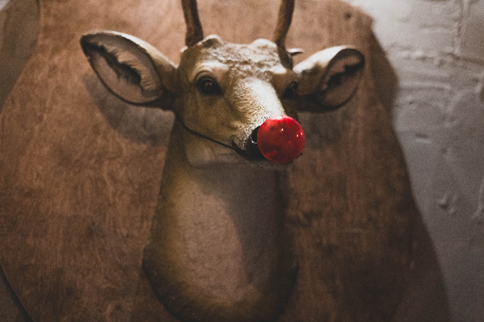 Deer head mounted on the wall with a red ball at the end of its nose.