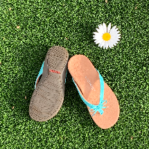 Tan Vionic slippers with aqua blue straps next to a white daisy