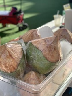 Coconuts in a clear container with ice at the farmers market in Waikiki.